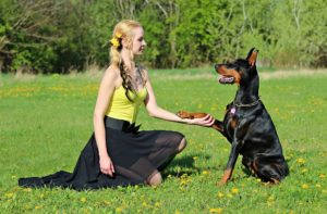 More Women Prefer Their Pet Dog Over Spending Time with Men
