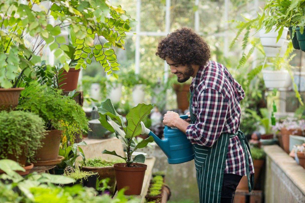 man happily watering plants