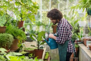 man happily watering plants