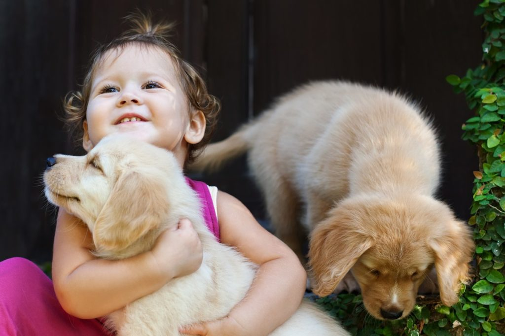 kid with two cute dogs